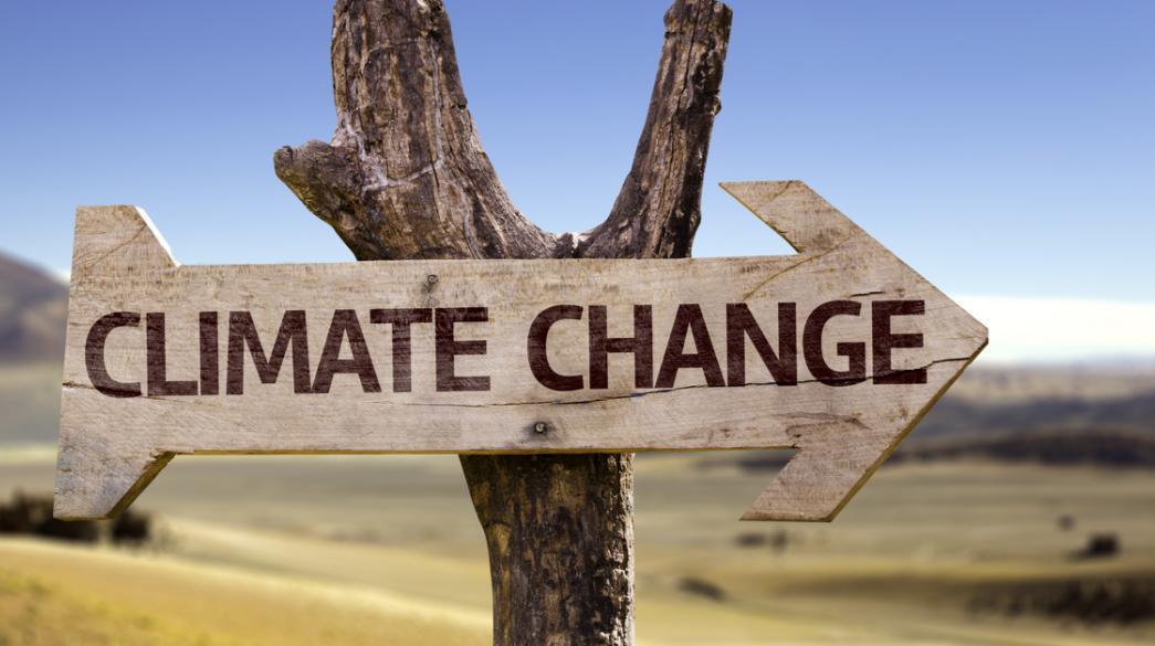 Πώς θα επηρεάσει την κλιματική αλλαγή ο κορονοϊός | Business Daily